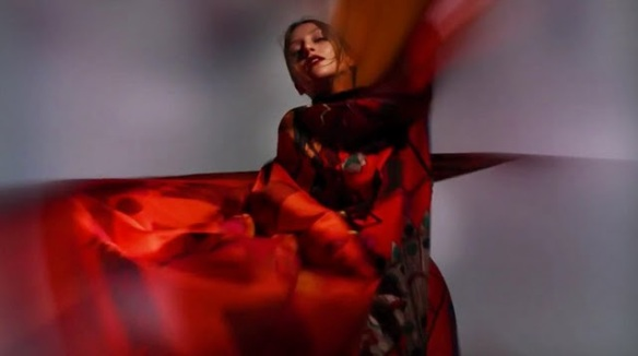 hermes-aw-2011-campaign-by-nick-knight-
