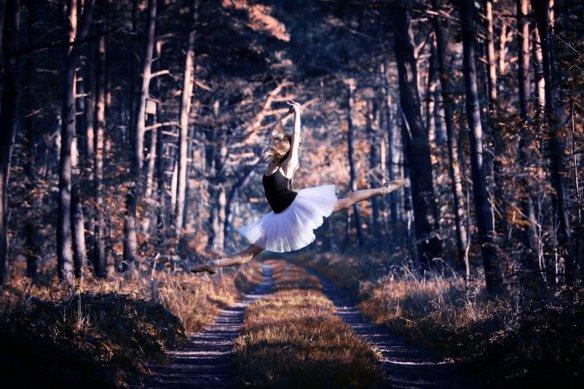 action-balet-ballet-beautiful-dance-Favim.com-341063